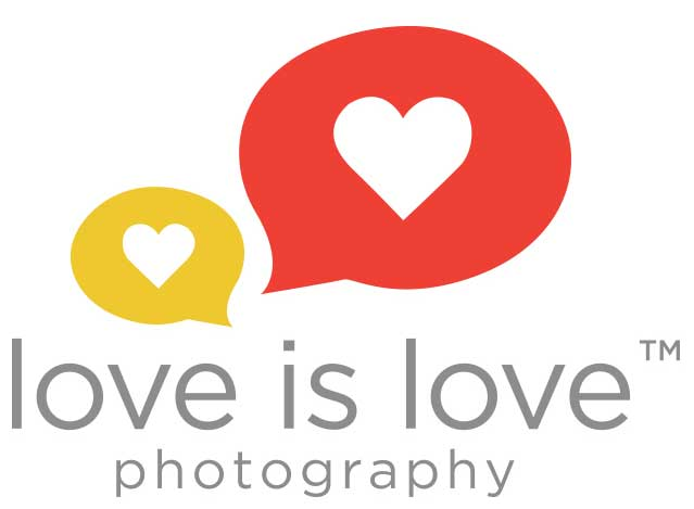 love is love photography logo